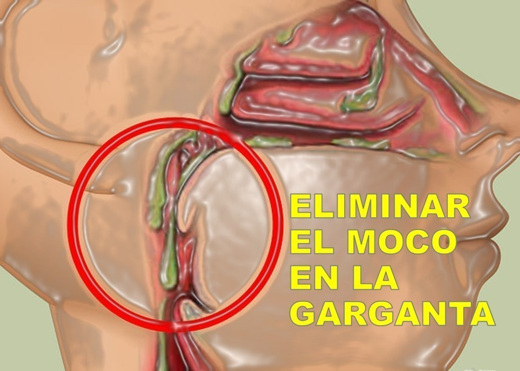 4 formas de despejar la mucosidad en la garganta -