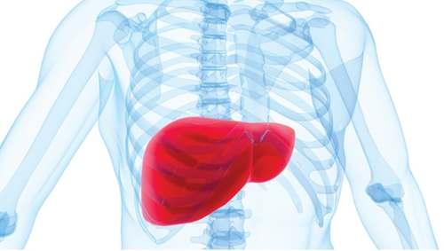Agrandamiento del Hígado
